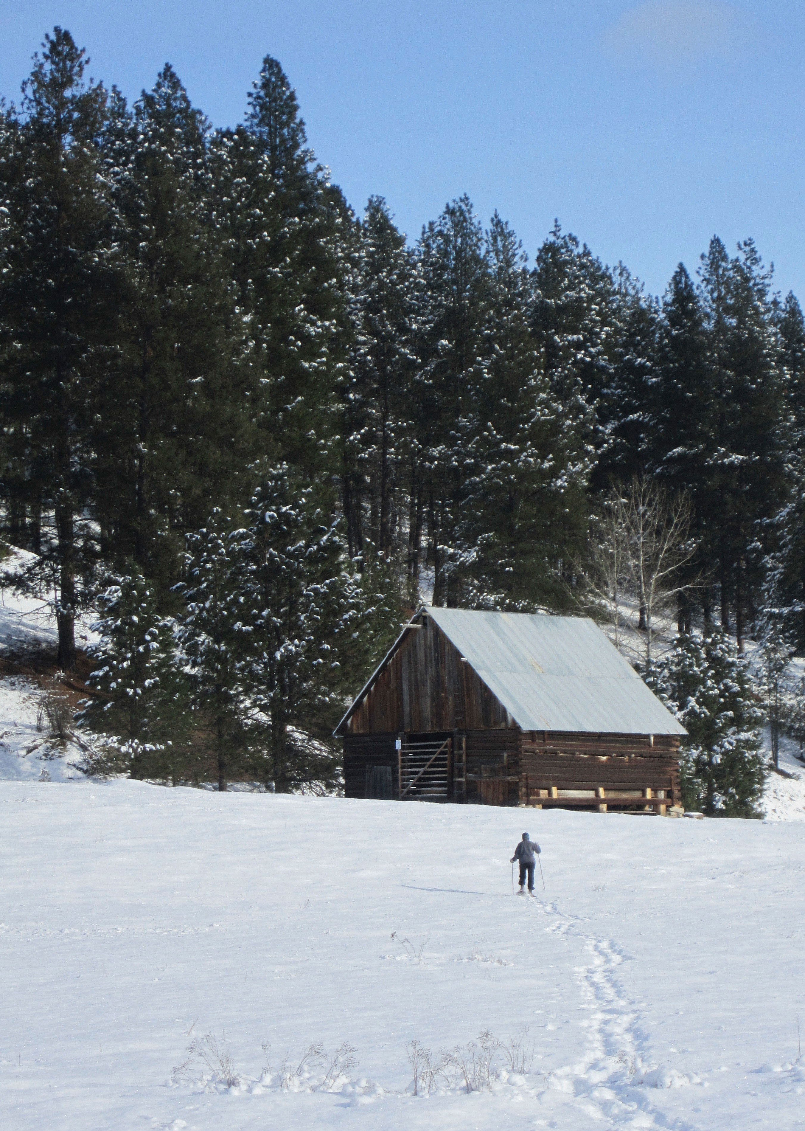 Snowshoeing To the Old Barn