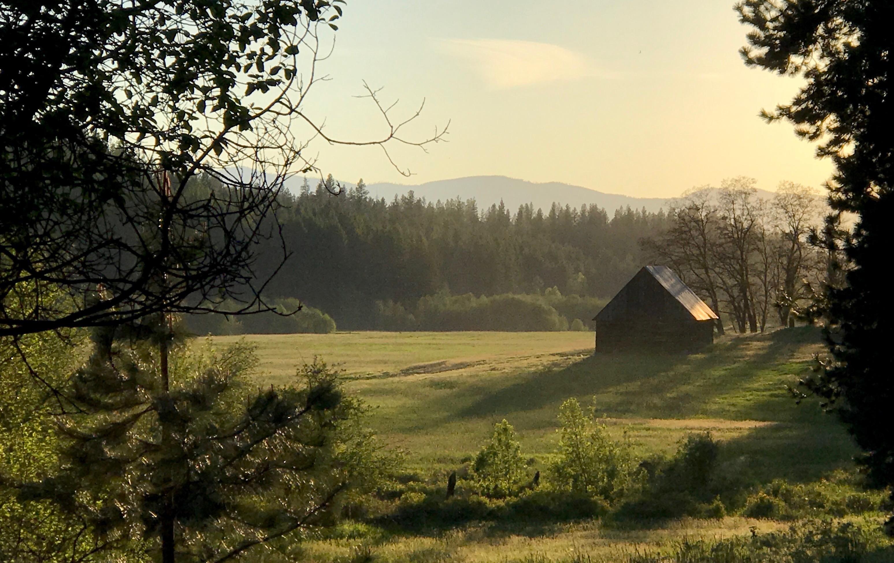 Sunset Farm Landscape