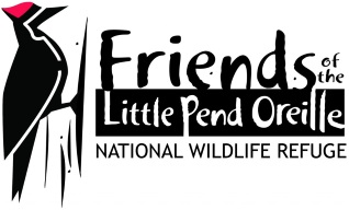 Friends of The Little Pend Oreille National Wildlife Refuge